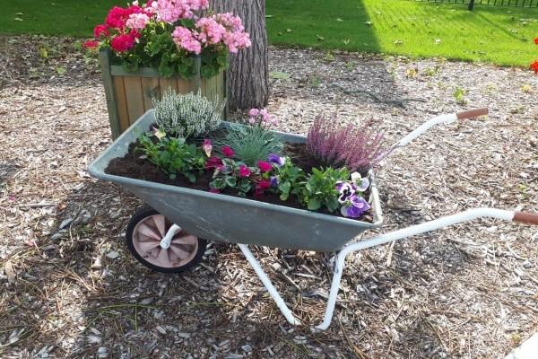 Gardening Club at The Burlington