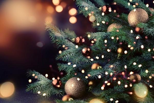 Christmas at the Burlington